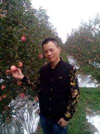 杨勋的简历照片