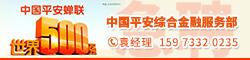中國(guo)平安(an)綜(zong)合金融服務部