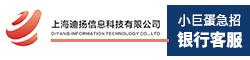 上海迪扬信息科技有限公司