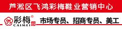 芦淞区飞鸿彩梅鞋业营销中心