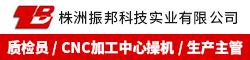株洲振邦科技实业有限公司